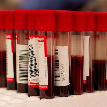 post 84 - infertilidade incompatibilidade genética e vacina