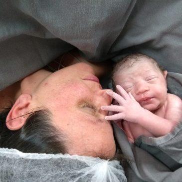 Karine Siqueira Cannavan - células NK e abortos