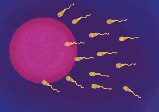 post 94 - espermograma com análise de fragmentação de DNA
